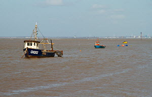 Small fishing boats at anchor, Meols, Wirral, Merseyside, England UK. April 2013. - Norma Brazendale