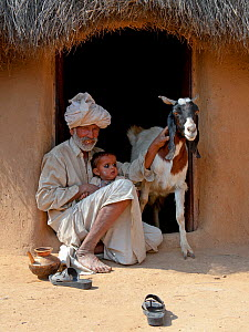 Goat keeper with baby and domestic goat (Capra aegagrus hircus) Thar Desert, Rajasthan, India - Axel Gomille,Axel  Gomille