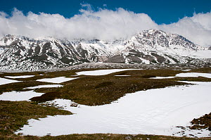 Campo Imperatore, in late spring as the snow melts, Gran Sasso, Appennines, Abruzzo, Italy, May 2011  -  Paul Harcourt Davies