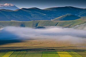 Low lying cloud / mist over the Piano Grande in the early morning, Sibillini, Norcia, Italy, June 2010  -  Paul Harcourt Davies,Paul  Harcourt Davies