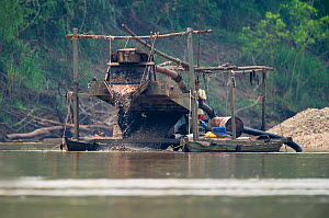 Panning for Gold on the Madre de Dios River in the Peruvian Amazon. The river has the highest levels of mercury pollution of any river worldwide due to the gold mining industry along its banks, Septem...  -  David Tipling