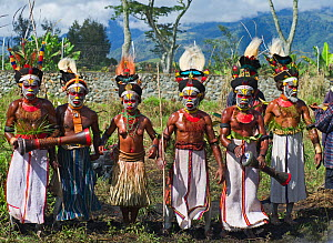 Western Highlanders performing at Hagen Show in Western Highlands, Papua New Guinea. August 2011 - David Tipling