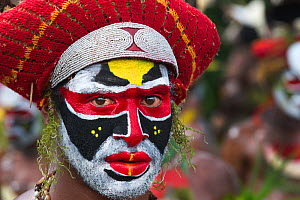 Member of Sing-sing group from Tambul, Western Highlands at Mount Hagen Show, Papua New Guinea, August 2011  -  David Tipling