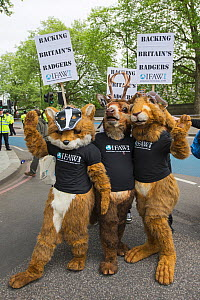People dressed in fox, deer and hare costumes, with a badger masks and International Fund for Animal Welfare t-shirts, at anti badger cull march, London, 1st June 2013  -  Terry Whittaker