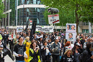 Group of demonstrators at anti badger cull march, London, 1st June 2013  -  Terry Whittaker