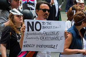 Man holding sign which says 'No to the badger cull, Scientifically fallable, Financially questionable and morally indiffensible' at anti badger cull march, London 1st June 2013  -  Terry Whittaker