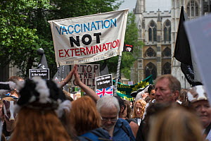 Group of demonstrators at anti badger cull march, with sign which reads 'Vaccination not extermination' outside, Houses of Parliament, London, 1st June 2013  -  Terry Whittaker