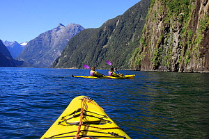 Kayaking in Milford Sound, South Island, New Zealand, March 2009  -  Brandon Cole