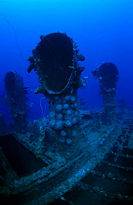 Engine room ventilator shafts of oil tanker 'Seiko Maru'. Sunk in Chuuk Lagoon 17/18th February 1944, Chuuk Lagoon, Pacific - Michael Pitts,Michael Pitts