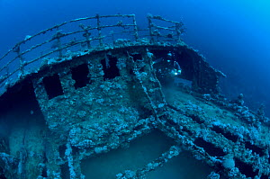 Wreck of the 'Iouna'. Diver at the ships stern - probably the bosuns store. Wrecked between 1912-1918. Sharmo reef, Yanbu, Saudi Arabia, July 2010  -  Michael Pitts