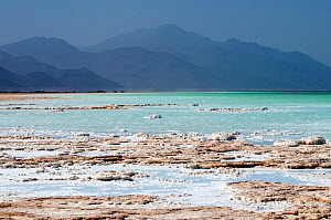 Lake Assal -  Africas lowest point at 515 feet below sea level, with dense concentrations of salt on the shore line, Djibouti, March 2008 - Michael Pitts