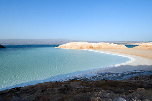 Lake Assal -  Africas lowest point at 515 feet below sea level , with dense concentrations of salt on the shoreline - Djiboutim , March 2008 - Michael Pitts