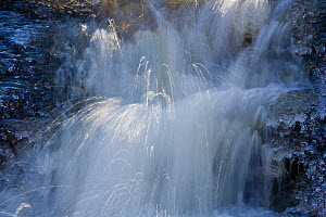 Icy waterfall, Getzbach, Belgian Ardennes, February 2008 - Theo Bosboom,Theo  Bosboom