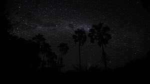 Timelapse of the Milky Way galaxy revolving due to the Earth's rotation, with clouds, footage taken at night using starlight camera technology, Santa Rosa National Park, Costa Rica, 2008. - Ammonite