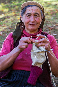 Woman (62 years old) knitting socks from own sheep wool in the garden of her nearby farmhouse in the village of Isverna. Mehedinti Plateau Geopark, Isverna, Romania, October 2012 - Wild Wonders of Europe / Möllers