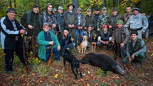Group of Romanian hunters posing with the only Wild boar (Sus scrofa) shot during a driving hunt in the forest area outside the village of Mehadia, Caras Severin, Romania, October 2012  -  Wild Wonders of Europe / Möllers