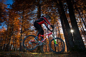 Mountain biker performing a jump in the Common beech (Fagus sylvatica) forest of the Tarcu Mountains Natura2000 site. Southern Carpathians, Muntii Tarcu, Caras-Severin, Romania, October 2012  -  Wild Wonders of Europe / Möllers