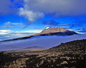 View of Mawenzi, one of the three cones of Kilimanjaro, Tanzania, February 1985 - Pascal Tordeux