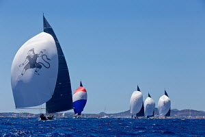 J-class fleet racing under spinnaker on the first day of the Superyacht Cup, Palma, Majorca, Spain, June 2013. All non-editorial uses must be cleared individually.  -  Jesus Renedo