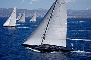 J-class fleet racing on the second day of the Superyacht Cup, Palma, Majorca, Spain, June 2013. All non-editorial uses must be cleared individually.  -  Jesus Renedo