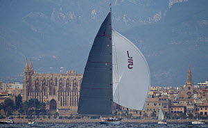 J-class yacht 'Ranger' with the city beyond on the third day of the Superyacht Cup, Palma, Majorca, Spain, June 2013. All non-editorial uses must be cleared individually.  -  Jesus Renedo