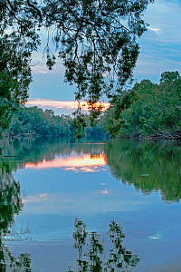 Mary River at dawn, Mary River Wilderness Retreat and Caravan Park, Northern Territory, Australia  -  Steven David Miller