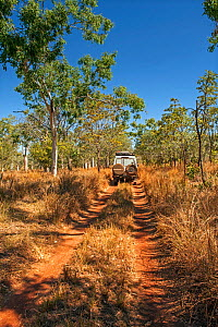 Four wheel drive doing down the track to Parry Creek Farm, Wyndham, Outback, Western Australia - Steven David Miller
