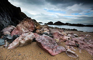 Pink Pre-Cambrian Quartzite boulders on a shingle beach, Llanddwyn Island, Anglesey, Wales, August 2012  -  Graham Eaton