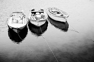 Black and white image of three punts, Mevagissey, Cornwall, England, January.  -  Merryn Thomas,Merryn  Thomas