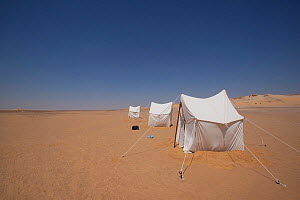 View of a BBC filming camp on location for the Sahara episode of the 'Africa' series, Egypt, September 2011.  -  Felicity Lanchester