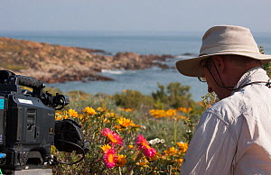 Cameraman Rod Clarke filming flowers for the Kalahari episode of the BBC series 'Africa', Namaqualand, South Africa, August 2012.  -  Felicity Lanchester