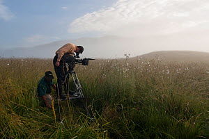 BBC cameramen Justin Maguire and Norbert Rottcher filming flowers using a camera track system for the BBC 'Africa' series, Kitulo Plateau National Park, Tanzania, February 2009.  -  Felicity Lanchester