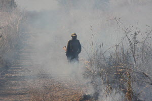 Zambian Wildlife Authority warden standing in the smoke from a grassland fire, South Luangwa National Park, Zambia. June 2011  -  Felicity Lanchester