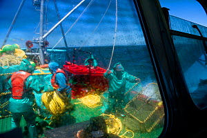 The crew of the James Archer, Oceana fisheries, throws baited lobster traps into the ocean to catch West coast rock lobster (Jasus lalandii). View from cabin window, Saldanha Bay and St. Helena Bay, W...  -  Cheryl-Samantha  Owen