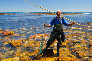 Man fishing for West coast rock lobster (Jasus lalandii)  with wooden pole and string of limpets as bait. Kommetjie, South Africa - Cheryl-Samantha  Owen