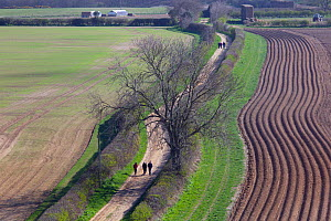 Walkers on footpath in farmland from Wiveton Downs, North Norfolk, UK, March  -  Ernie Janes,Ernie  Janes