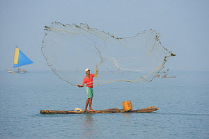 Throw-net fisherman, on raft, Pulicat Lake, Tamil Nadu, India, January 2013. - Staffan Widstrand,Staffan Widstrand