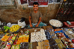 Market stall with spices and garlic for sale, Pulicat Lake, Tamil Nadu, India, January 2013.  -  Staffan Widstrand