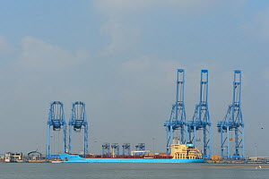 Shipping terminal with large freight ship, Pulicat Lake, Tamil Nadu, India, January 2013.  -  Staffan Widstrand
