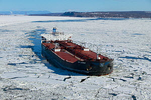 Tanker making its way down the icey St Lawrence River in Quebec, Canada, February 2005. - Onne van der Wal