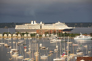 Cruise ship anchored off Newport Harbour beyond the town and Goat Island. Rhode Island, USA. - Onne van der Wal
