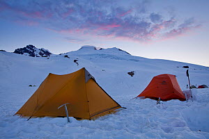 Tents at the mountaineering base camp for Mount Baker at sunrise, in the snow, Cascade Range, Washington, USA, June 2013 - Floris  van Breugel