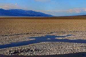 Salt pan at Badwater, Death Valley National Park, California, USA  November 2012  -  Jouan & Rius,Jouan Rius