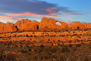 Skyline Arch at dusk, Arches National Park, Utah, USA November 2012 - Jouan Rius