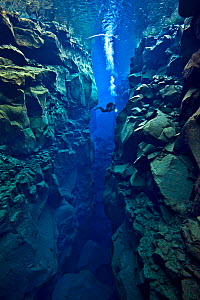 Diver explores the cathedral at Silfra Canyon, deep fault filled with fresh water in the rift valley between the Eurasian and American tectonic plates, at Thingvellir National Park, Iceland. May 2011....  -  Alex  Mustard