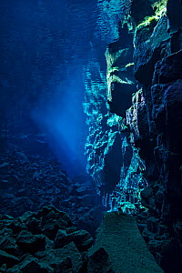A view down Nikulasargj Canyon, deep fault filled with fresh water in the rift valley between the Eurasian and American tectonic plates at Thingvellir National Park, Iceland. May 2011. In this photo t...  -  Alex Mustard,Alex  Mustard