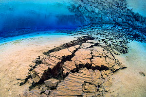A fracture in the earth's crust in the rift valley between the American and Eurasian continental plates in Iceland. This fracture was underwater in a shallow lagoon, filled with crystal clear spring w...  -  Alex  Mustard
