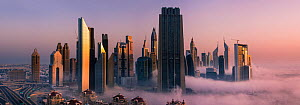 Downtown Dubai skyline at dawn, with unusual low cloud and mist rolling in. Dubai, United Arab Emirates. April 2013 - Nick Garbutt