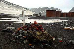 Grave covered with red rocks, near Old Whaling Station. Deception Island. Antarctica  -  Enrique Lopez-Tapia
