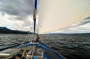 View from aboard boat navigating the Beagle Channel (named after visit of the HMS Beagle and Darwin) between Chilean and Argentinian areas of Tierre del Fuego - Enrique Lopez-Tapia